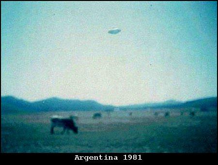 argentina1981