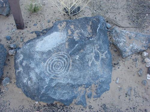 A spiral and bird petroglyph from Boca Negra Canyon