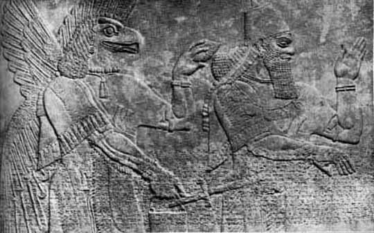 Reptilian Nephilim Anunnaki Pine Cone Spiritual Awakening Consciouness