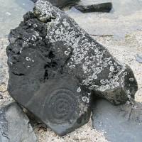 Wrangell Petroglyph Beach Spiral Rock1 200x200 Ancient Spirals