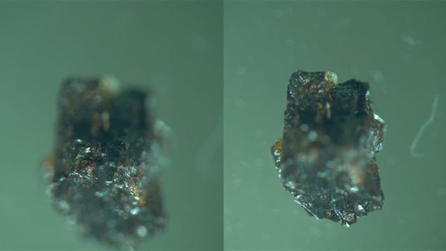 Optical Microscope Alien Implant Alien Implants Best Evidence